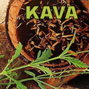 Kava Love