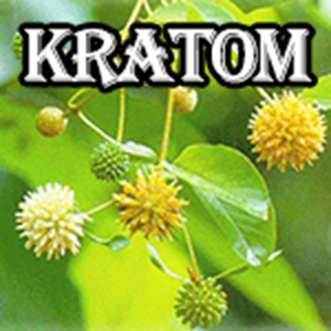 Proper Dosage For Kratom