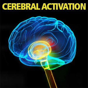 Cerebral Activation