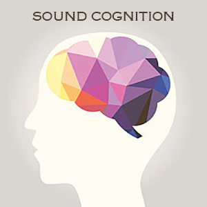 Sound Cognition