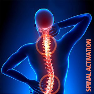 Spinal Activation